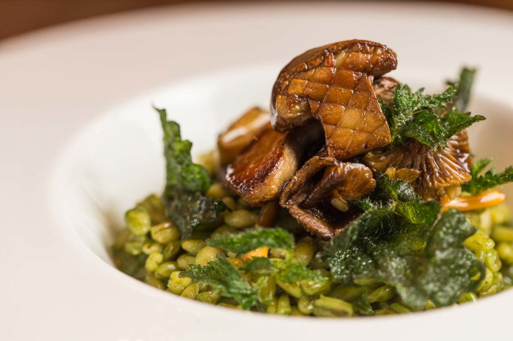 Risotto with mushrooms on top in a white bowl, served by The Oxford Blue Pub and chef Steven Ellis