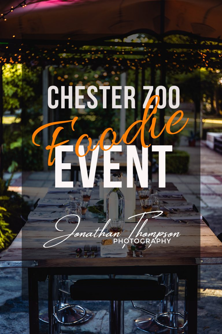 Chester Zoo Foodie Event blog post picture