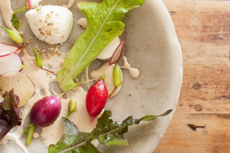 Fresh curd, radish, herbs at The Dairy